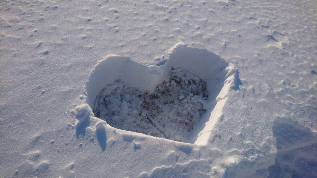 ホロシリ乗馬クラブの雪景色