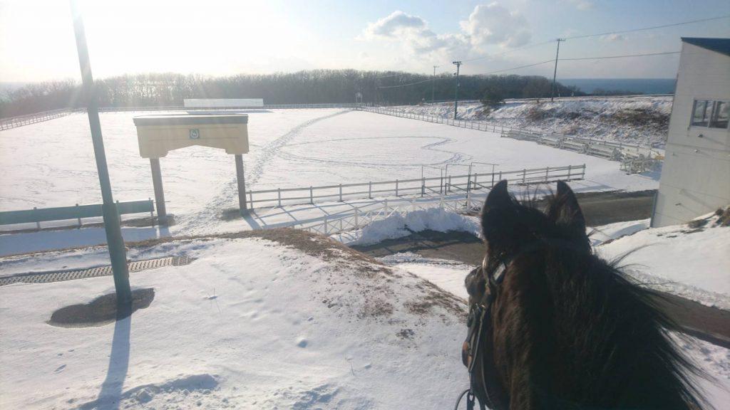 馬場の雪にハートの足跡